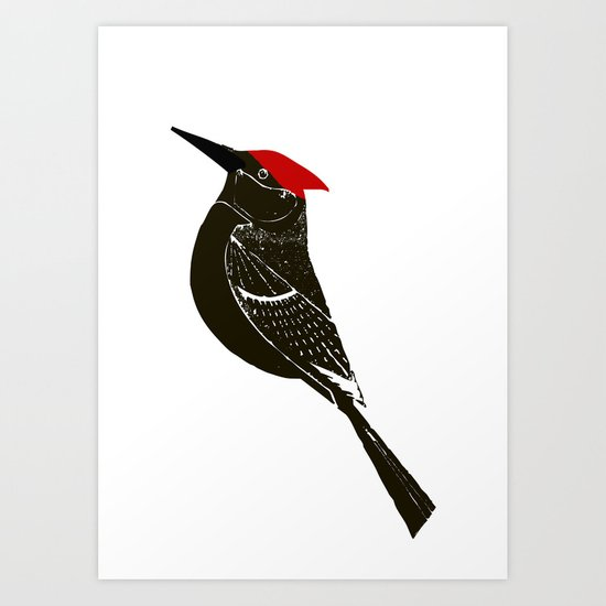 Birds- wood pecker Art Print