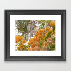 Touch of warmth Framed Art Print