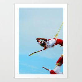 Flying artist collection _03 Art Print
