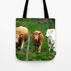 Cows on the field Tote Bag