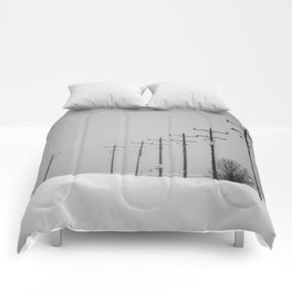 Forty Comforters