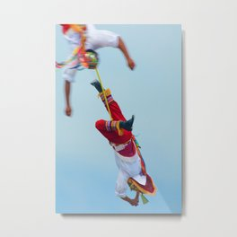 Flying artist collection _04 Metal Print