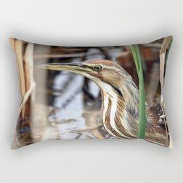 American Bittern - Take Two Rectangular Pillow