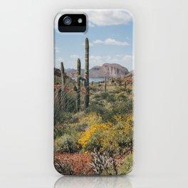 Arizona Spring iPhone Case