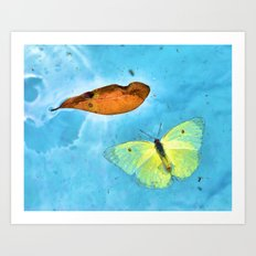 Floating Butterfly and Leaf Art Print