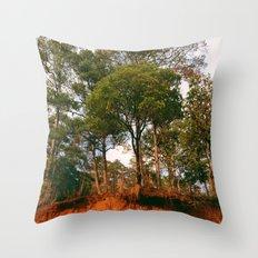 Origin of Life Throw Pillow