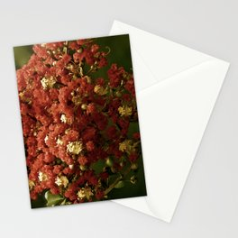 Christmas Crepe Tree Stationery Cards
