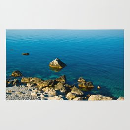 calm sea at the shore Rug