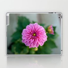 A New Perspective  Laptop & iPad Skin