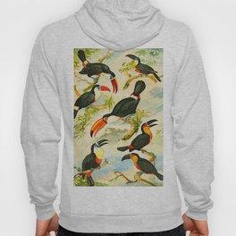Album de aves amazonicas - Emil August Göldi - 1900 Tropical Colorful Amazon Birds Hoody