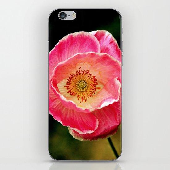 open eye iPhone & iPod Skin