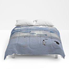 Gentoo Penguins on Ice Comforters