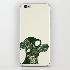 Dog likes to fly planes iPhone & iPod Skin