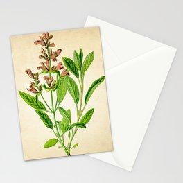 Sage Herb Art Print, Kitchen Art Print, Sage Herbs Spices Poster, Herb Chart, Herbal Sage Poster, Kitchen Decor Art Print, Herb Sage Art Prints Stationery Cards