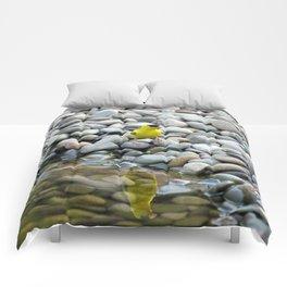 Golden Reflections Comforters