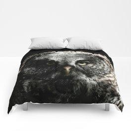 The phantom of the north Comforters