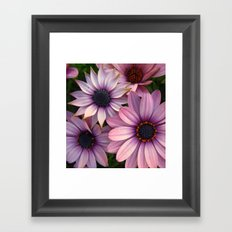 Equally Different Framed Art Print