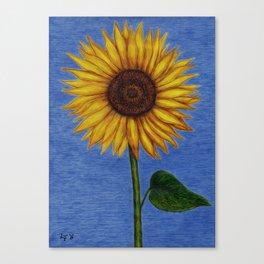 Sunflower by Lars Furtwaengler | Ink Pen | 2011 Canvas Print