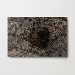Surfacing From The Sand Metal Print