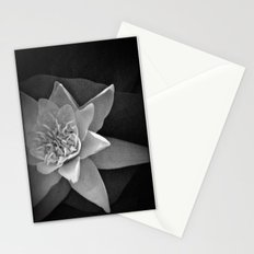 Nature star Stationery Cards