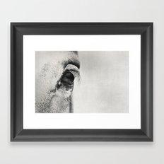 HorSe (V2 grey) Framed Art Print