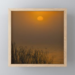 Golden Morning Framed Mini Art Print