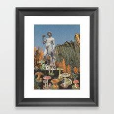 161.  Framed Art Print
