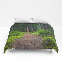 Green Forest Path (Color) Comforters