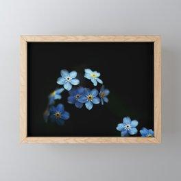 Forget Me Nots on Black Framed Mini Art Print