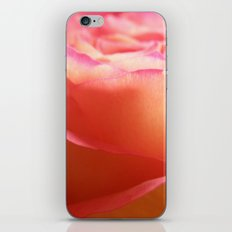 Two-Tone Roses #1 iPhone & iPod Skin