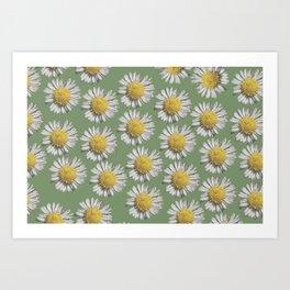 pastel daisy mania Art Print