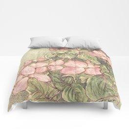 Satomi Dogwood, Pencil Sketch II Comforters