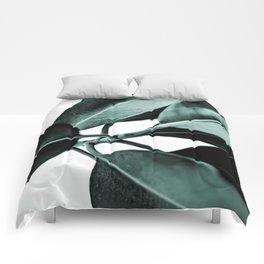 Minimal Rubber Plant Comforters