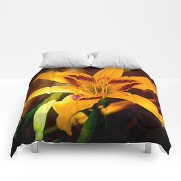 Day Lily Comforters