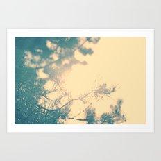 Sunny daze Art Print