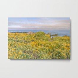 Monterey Wildflowers Metal Print