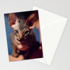 Sphynx Max Stationery Cards