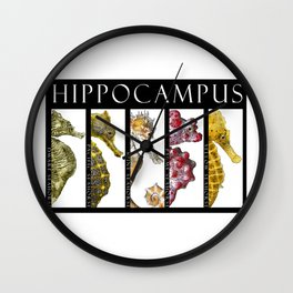 Seahorses - Hippocampus Wall Clock