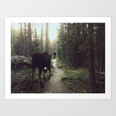 Trail Moose Art Print