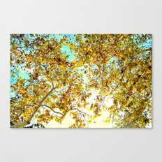 Autumn Umbrella Canvas Print