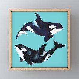 Orca Twins Framed Mini Art Print