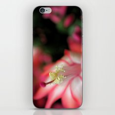 Waiting For Bees iPhone & iPod Skin