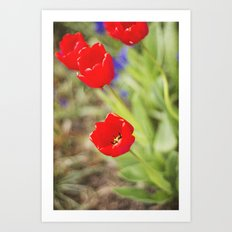 Bursts of Red Art Print