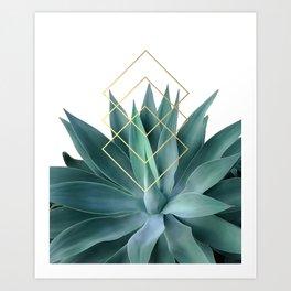 Agave geometrics Art Print