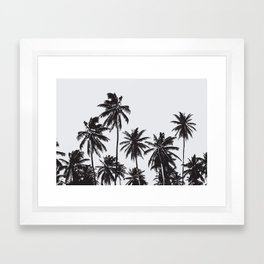 Palm 05 Framed Art Print