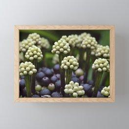 Green Aralia Flowers Framed Mini Art Print
