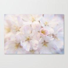 Ornamental Cherry Blossom Canvas Print