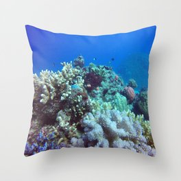 Great Barrier Reef Throw Pillow