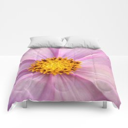 Pink Cosmo Comforters