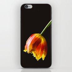 Elixir iPhone & iPod Skin